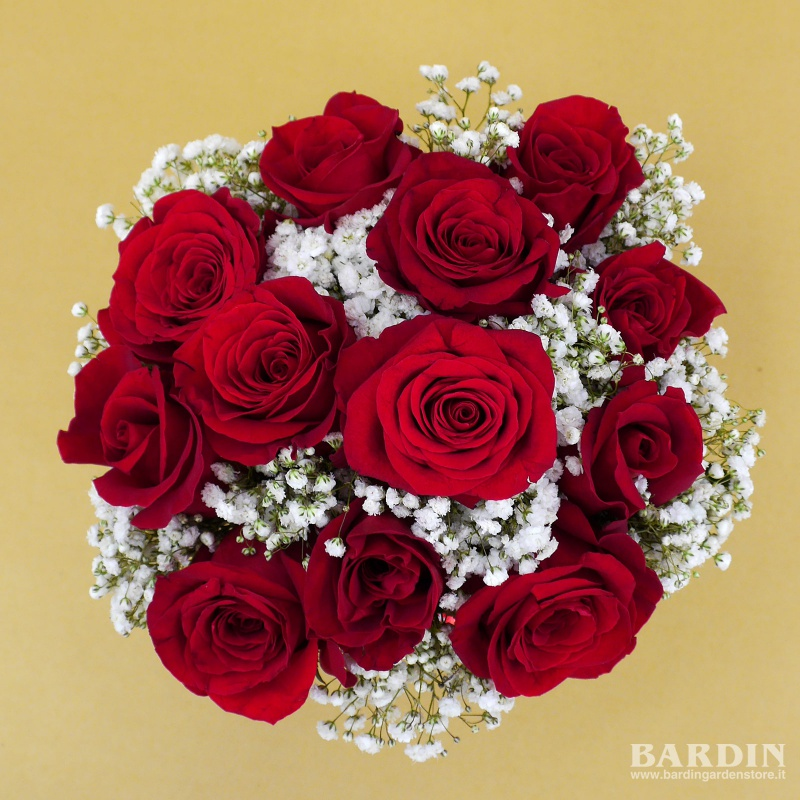 Bouquet Sposa Rose Rosse.Scatola 12 Rose Rosse E Velo Da Sposa Eshop Bardin Gardencenter