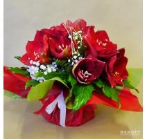 Bouquet Amaryllis con riserva acqua