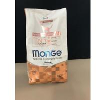 MONGE SALMONE