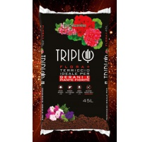 TRIPLO FLORA +