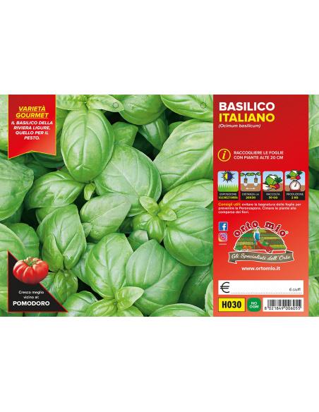 BASILICO ITALIANO CLASSICO GEMMA PACK H030