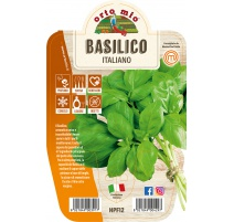BASILICO ITALIANO CLASSICO VARIETA' GEMMA