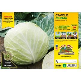 CAVOLO CAPPUCCIO TONDO PRECOCE CILEMA H080