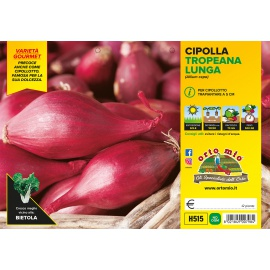 CIPOLLA TROPEA ROSSA LUNGA H515
