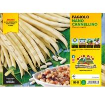 FAGIOLO NANO CANNELLINO H561