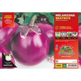 MELANZANA LILLA H252