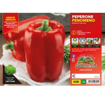 PEPERONE ROSSO H301