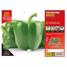 PEPERONE VERDE H300
