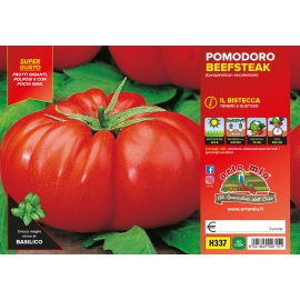 POMODORO GIGANTE BEEFSTEAK H337
