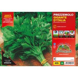 PREZZEMOLO GIGANTE D'ITALIA PACK H115