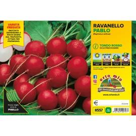 RAVANELLO ROSSO H557
