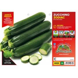 ZUCCHINO SCURO H420