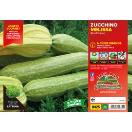 ZUCCHINO CHIARO CON FIORE H425
