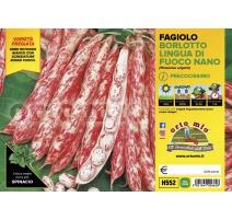 FAGIOLO NANO BORLOTTO H552