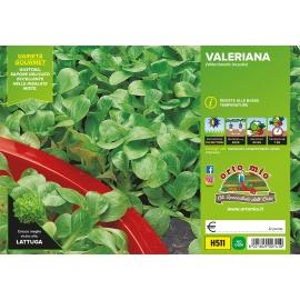VALERIANA H511
