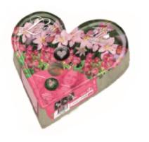 BULBI PLANT-O-MAT HEART TRAY W10