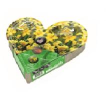 BULBI PLANT-O-MAT HEART TRAY W20