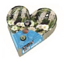 BULBI PLANT-O-MAT HEART TRAY W40