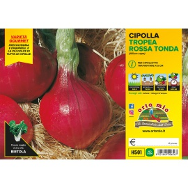 CIPOLLA TROPEA ROSSA TONDA H501