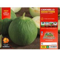 CETRIOLO CAROSELLO PUGLIESE H113