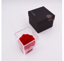 ARS NOVA FLOWERCUBE 10x10 CM COLORE ROSSO