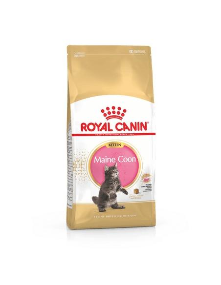 ROYAL CANIN KITTEN MAINE COON 400 GR