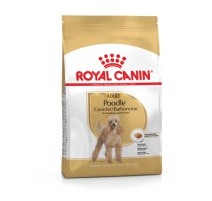 ROYAL CANIN BARBONCINO 500 GR