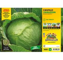 CAVOLO CAPPUCCIO TONDO TARDIVO H083