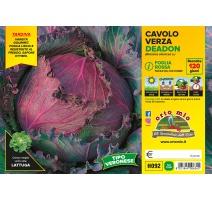 CAVOLO VERZA LISCIA GREEN H093
