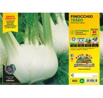 FINOCCHIO VARIETA' BELLOTTO H120