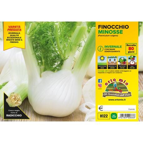 FINOCCHIO AUTUNNALE H121