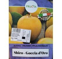 SUSINO SHIRO - GOCCIA D'ORO
