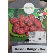 GELSO ROSSO