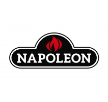 Barbecue a Gas Napoleon